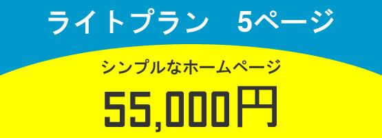 ライトプラン 5ページ 55,000円
